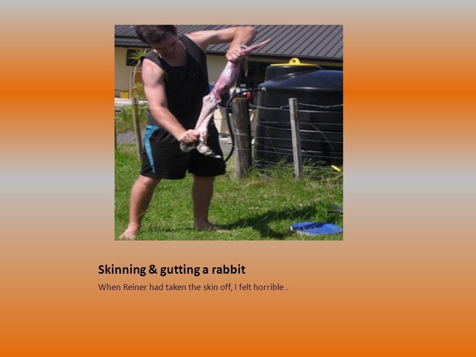 Skinning & gutting a rabbit When Reiner had taken the skin off, I felt horrible.