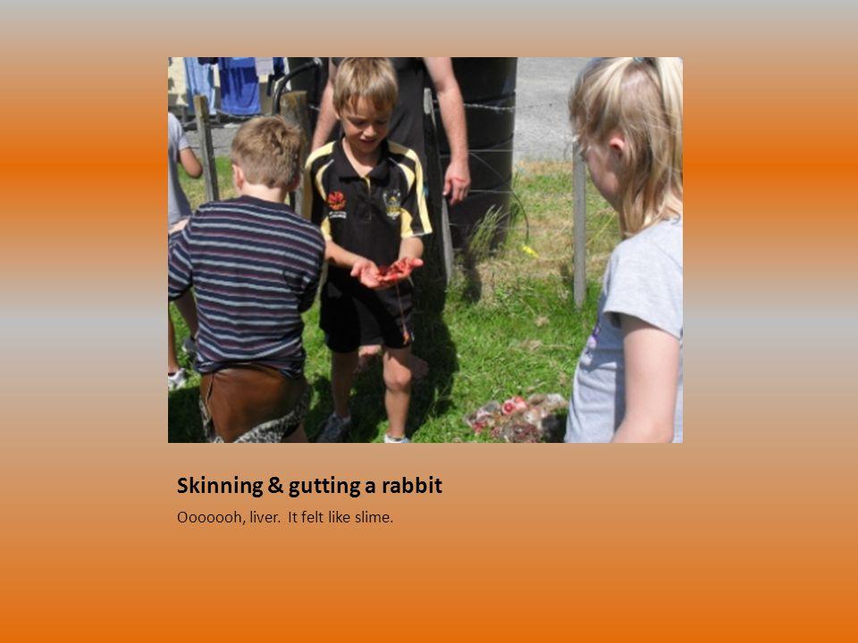 Skinning & gutting a rabbit Ooooooh, liver. It felt like slime.
