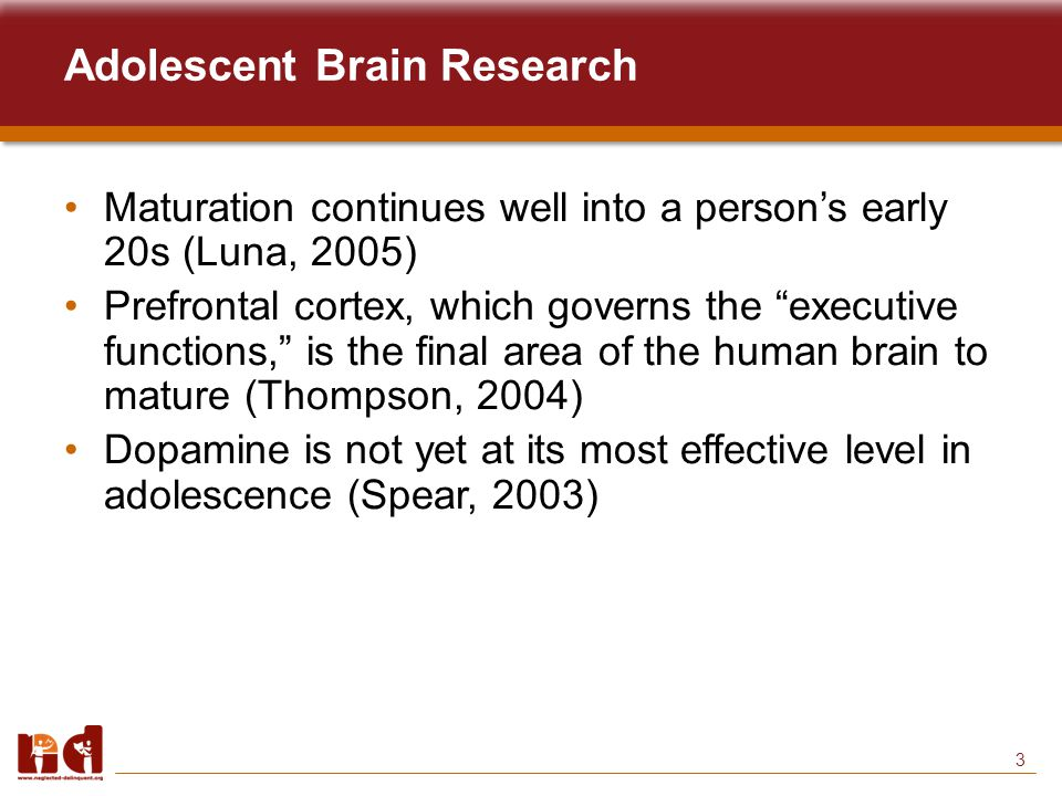 3 Adolescent Brain Research Maturation continues well into a person's early 20s (Luna, 2005) Prefrontal cortex, which governs the executive functions, is the final area of the human brain to mature (Thompson, 2004) Dopamine is not yet at its most effective level in adolescence (Spear, 2003)