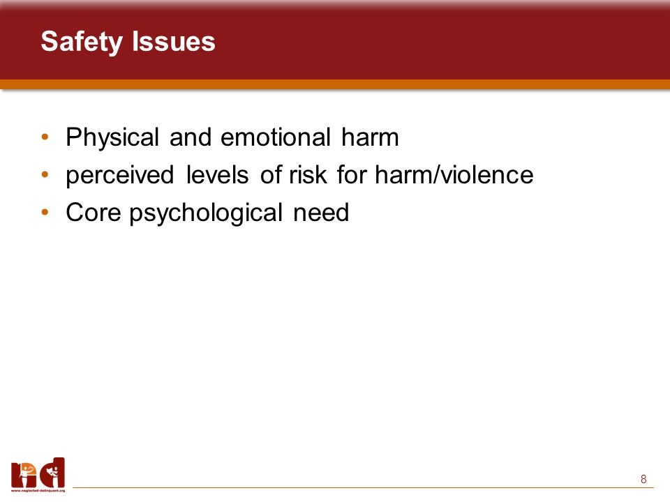8 Safety Issues Physical and emotional harm perceived levels of risk for harm/violence Core psychological need