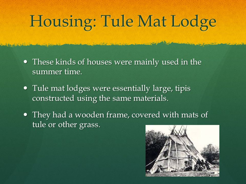 Housing: Tule Mat Lodge These kinds of houses were mainly used in the summer time. These kinds of houses were mainly used in the summer time. Tule mat