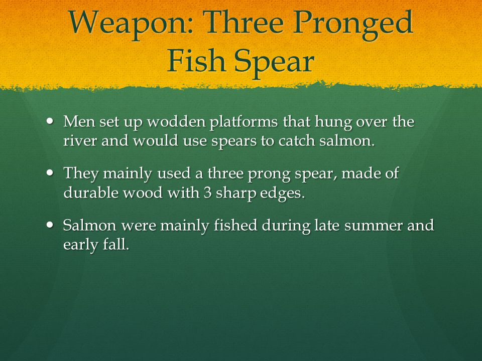 Weapon: Three Pronged Fish Spear Men set up wodden platforms that hung over the river and would use spears to catch salmon.