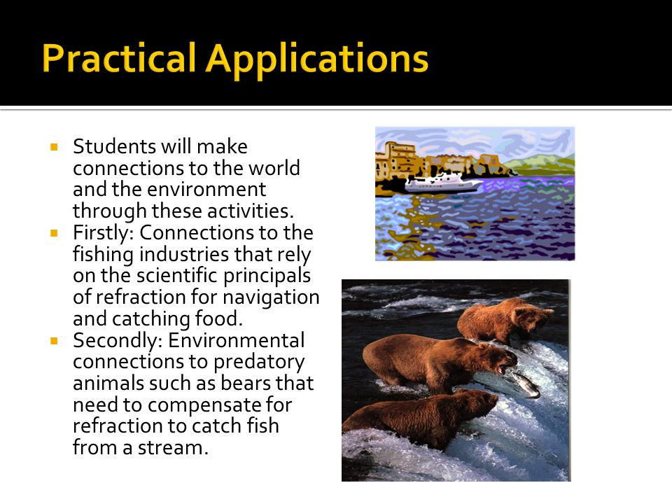  Students will make connections to the world and the environment through these activities.  Firstly: Connections to the fishing industries that rely
