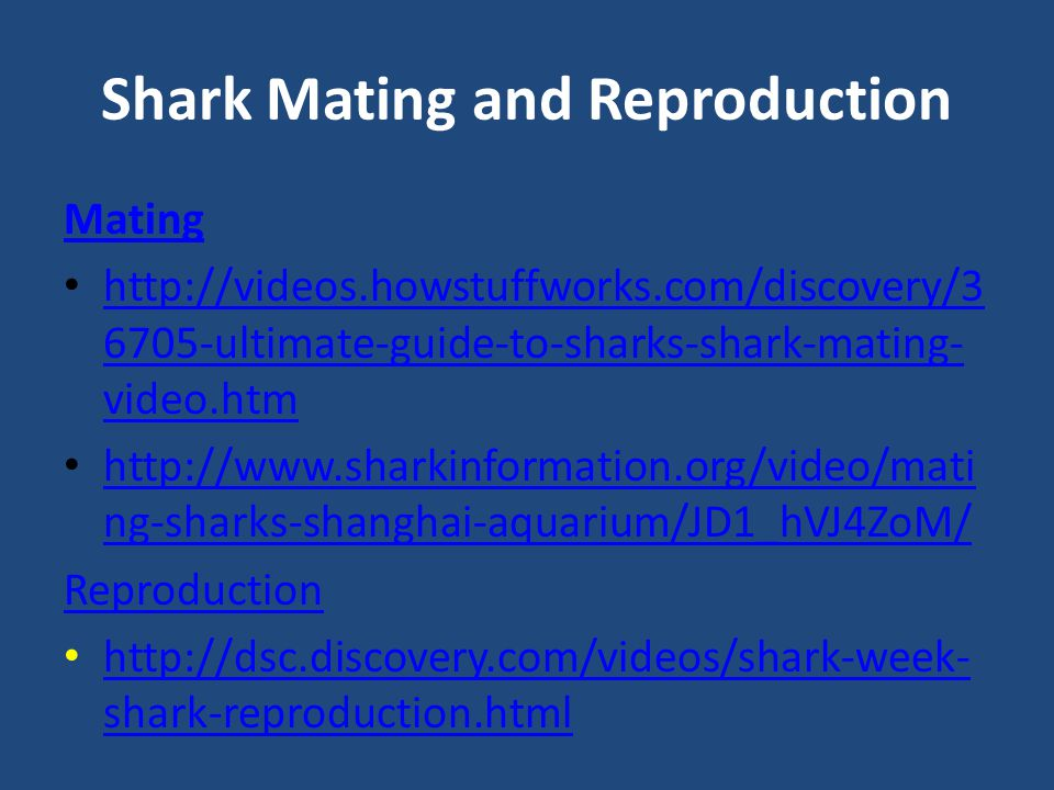 Shark Mating and Reproduction Mating http://videos.howstuffworks.com/discovery/3 6705-ultimate-guide-to-sharks-shark-mating- video.htm http://videos.howstuffworks.com/discovery/3 6705-ultimate-guide-to-sharks-shark-mating- video.htm http://www.sharkinformation.org/video/mati ng-sharks-shanghai-aquarium/JD1_hVJ4ZoM/ http://www.sharkinformation.org/video/mati ng-sharks-shanghai-aquarium/JD1_hVJ4ZoM/ Reproduction http://dsc.discovery.com/videos/shark-week- shark-reproduction.html http://dsc.discovery.com/videos/shark-week- shark-reproduction.html