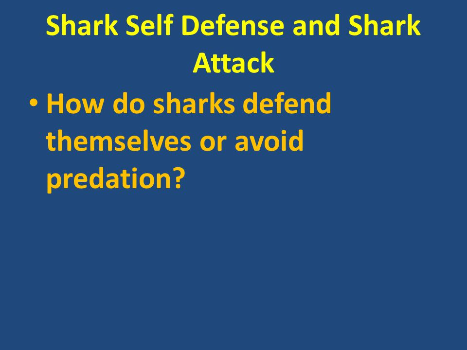 Shark Self Defense and Shark Attack How do sharks defend themselves or avoid predation?