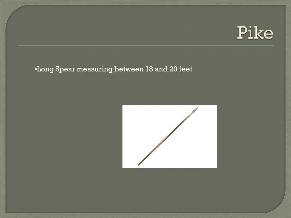 Long Spear measuring between 18 and 20 feet