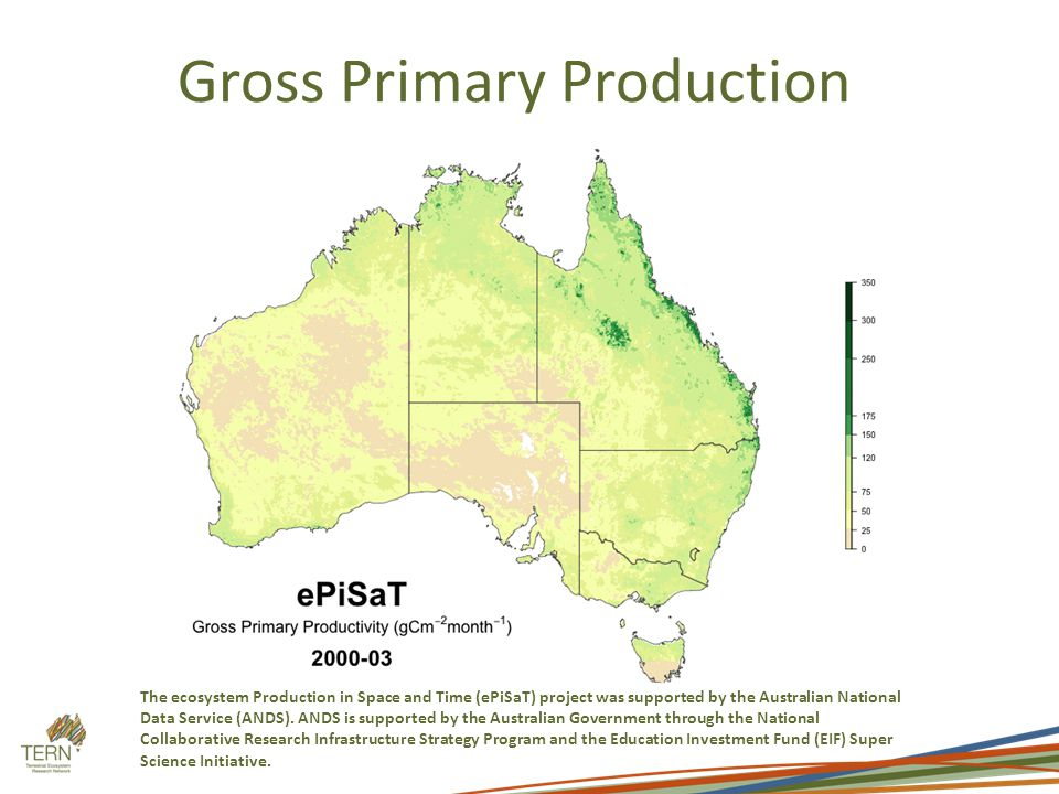 Gross Primary Production The ecosystem Production in Space and Time (ePiSaT) project was supported by the Australian National Data Service (ANDS).