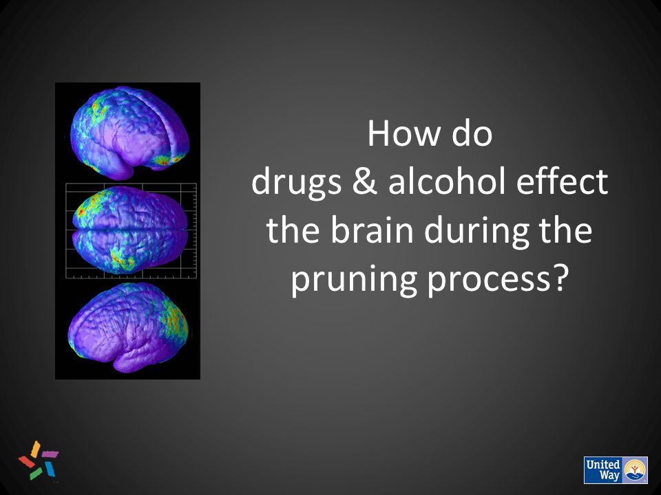 How do drugs & alcohol effect the brain during the pruning process