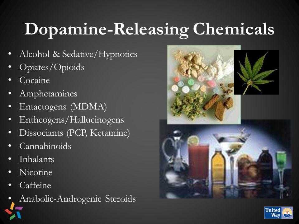 Dopamine-Releasing Chemicals Alcohol & Sedative/Hypnotics Opiates/Opioids Cocaine Amphetamines Entactogens (MDMA) Entheogens/Hallucinogens Dissociants (PCP, Ketamine) Cannabinoids Inhalants Nicotine Caffeine Anabolic-Androgenic Steroids
