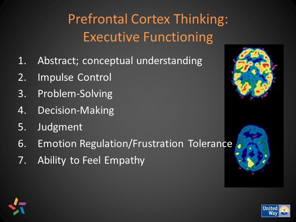 Prefrontal Cortex Thinking: Executive Functioning 1.Abstract; conceptual understanding 2.Impulse Control 3.Problem-Solving 4.Decision-Making 5.Judgment 6.Emotion Regulation/Frustration Tolerance 7.Ability to Feel Empathy