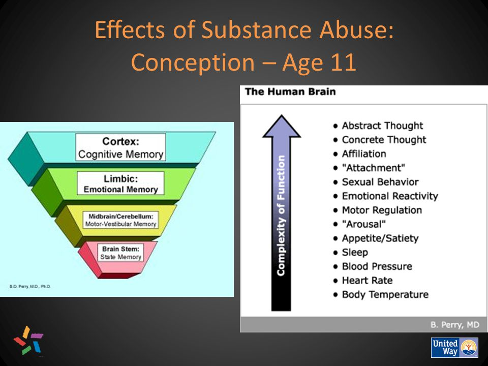 Effects of Substance Abuse: Conception – Age 11