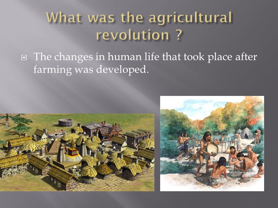  The changes in human life that took place after farming was developed.