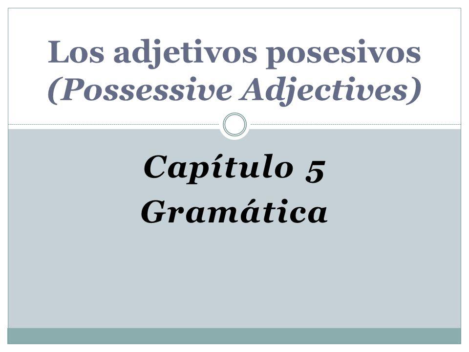 Capítulo 5 Gramática Los adjetivos posesivos (Possessive Adjectives)