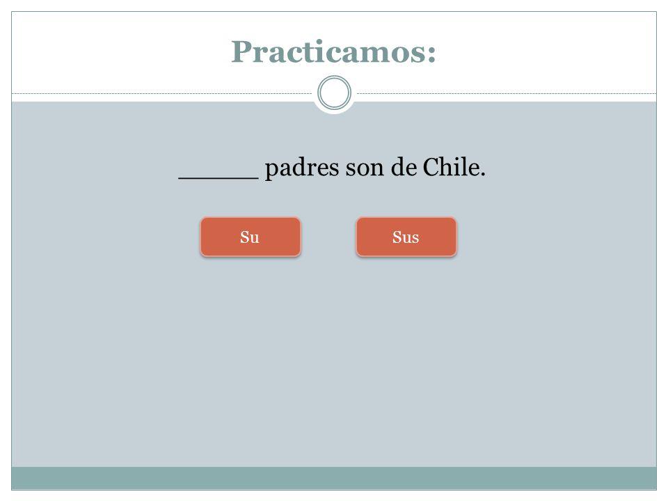 Practicamos: _____ padres son de Chile. Su Sus