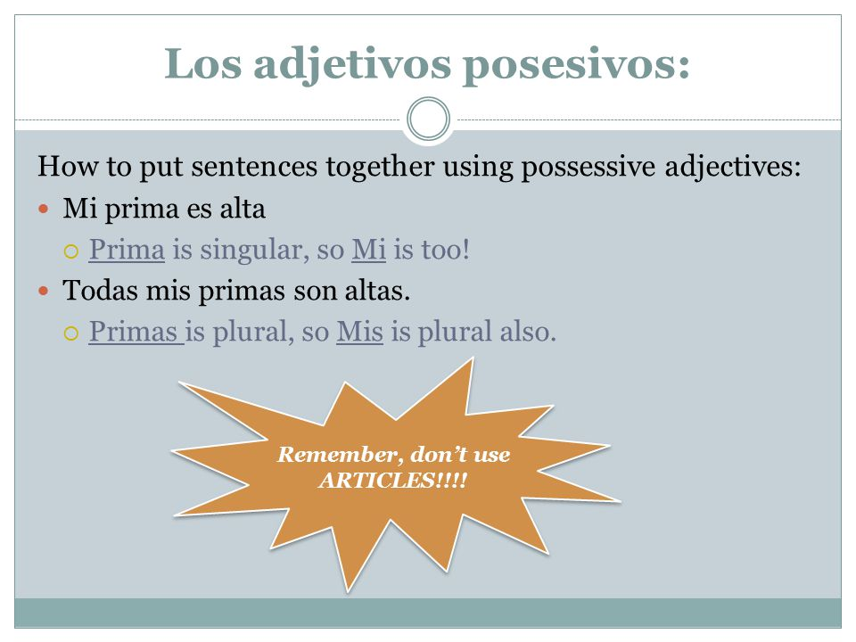 Los adjetivos posesivos: How to put sentences together using possessive adjectives: Mi prima es alta  Prima is singular, so Mi is too! Todas mis prim