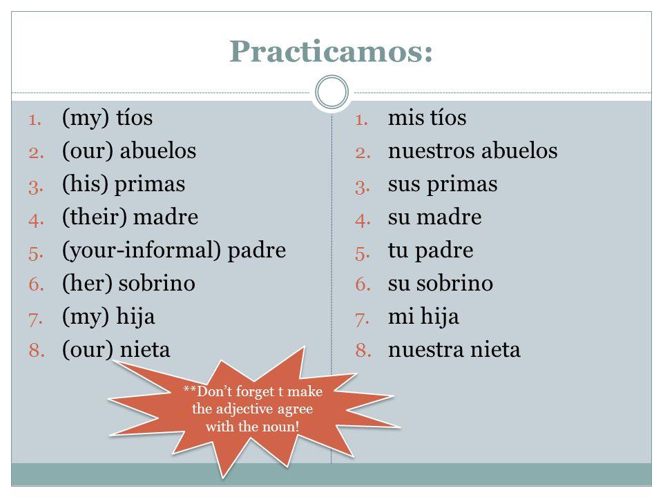 Practicamos: 1. (my) tíos 2. (our) abuelos 3. (his) primas 4. (their) madre 5. (your-informal) padre 6. (her) sobrino 7. (my) hija 8. (our) nieta 1. m