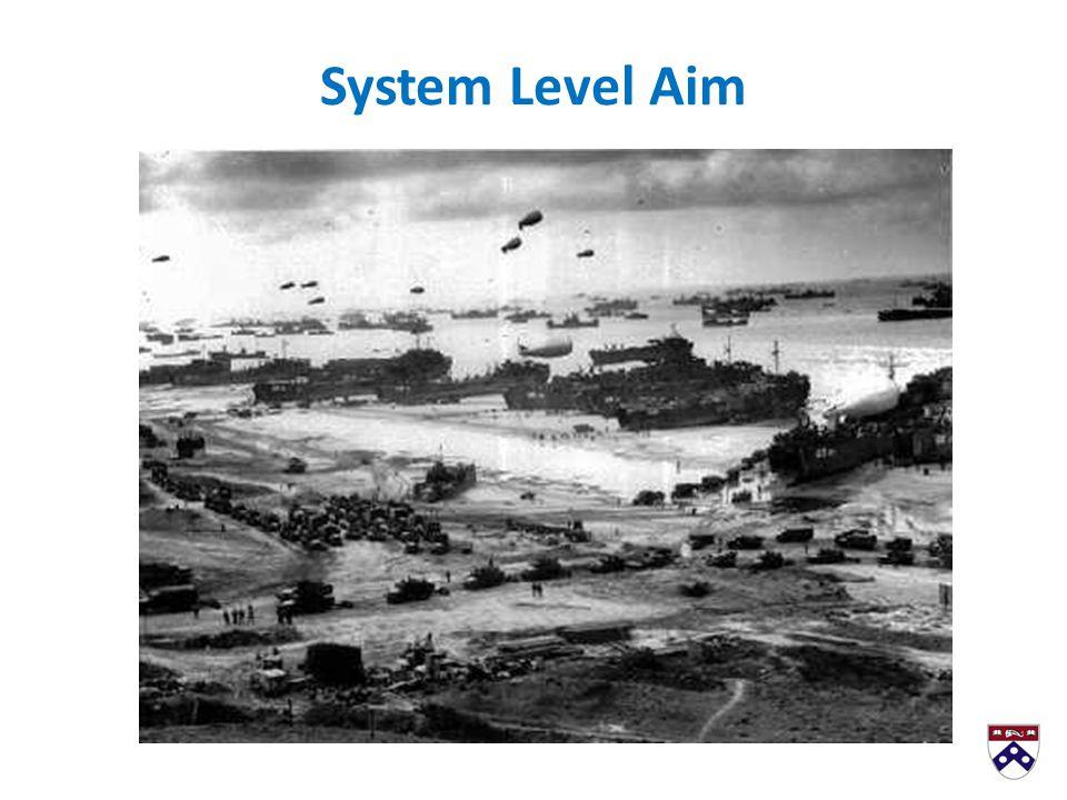 System Level Aim