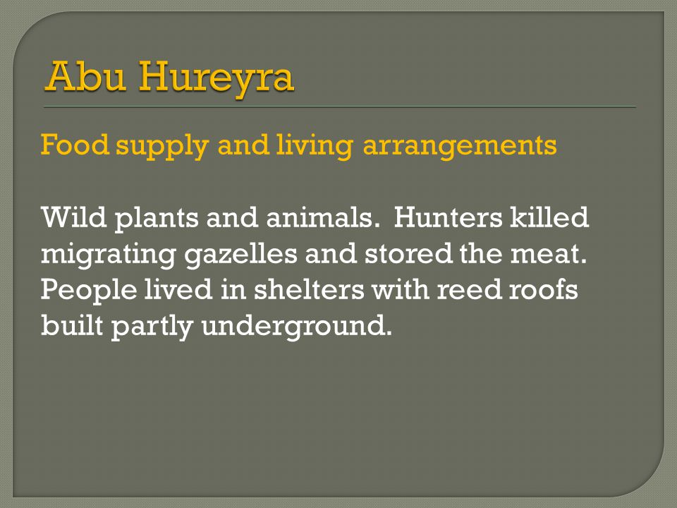 Food supply and living arrangements Wild plants and animals.