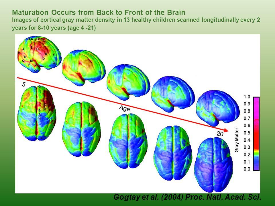 Gogtay et al. (2004) Proc. Natl. Acad. Sci.