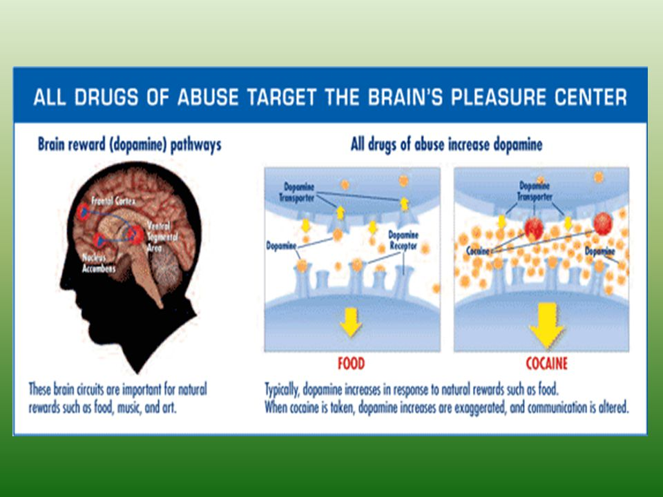 So, Drugs & alcohol and other addictions can mimic dopamine production.