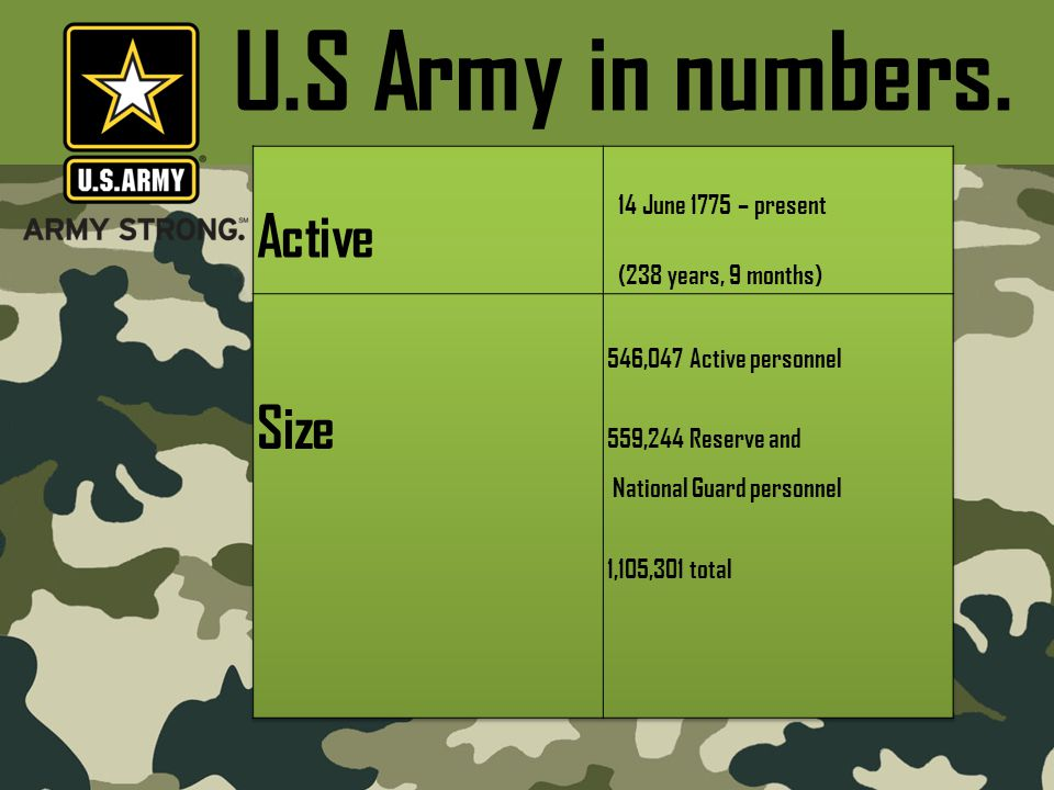 U.S Army in numbers.