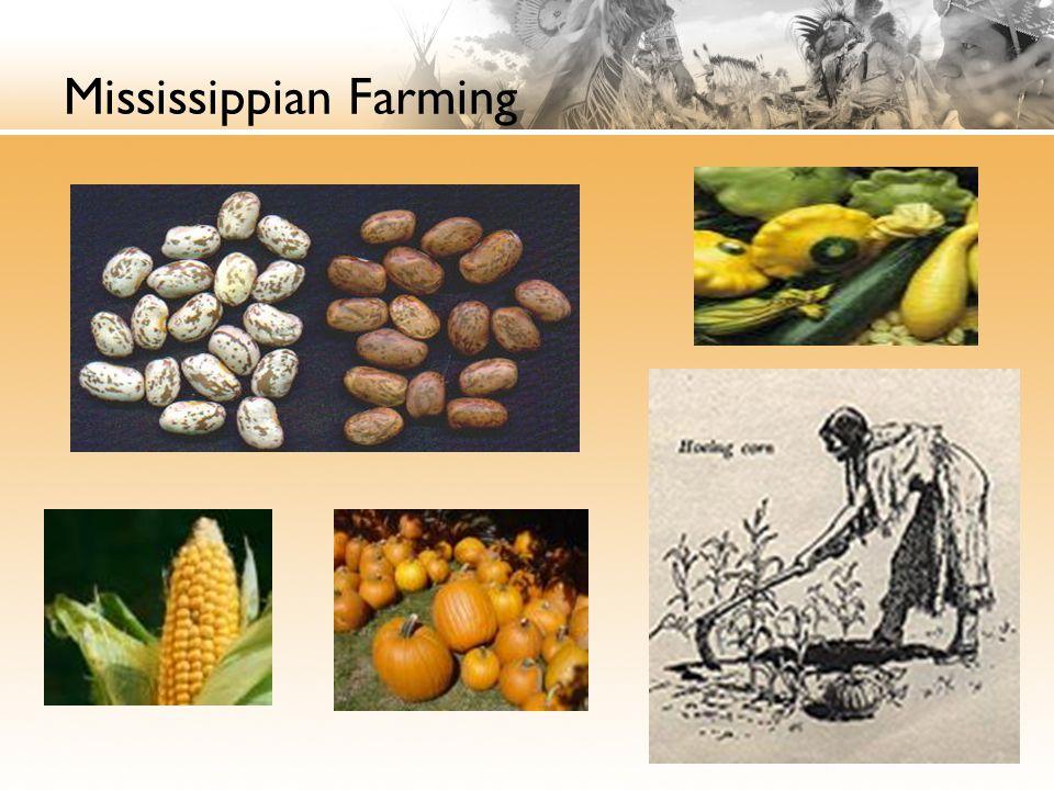 Mississippian Farming
