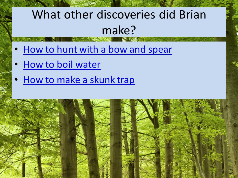 What other discoveries did Brian make.