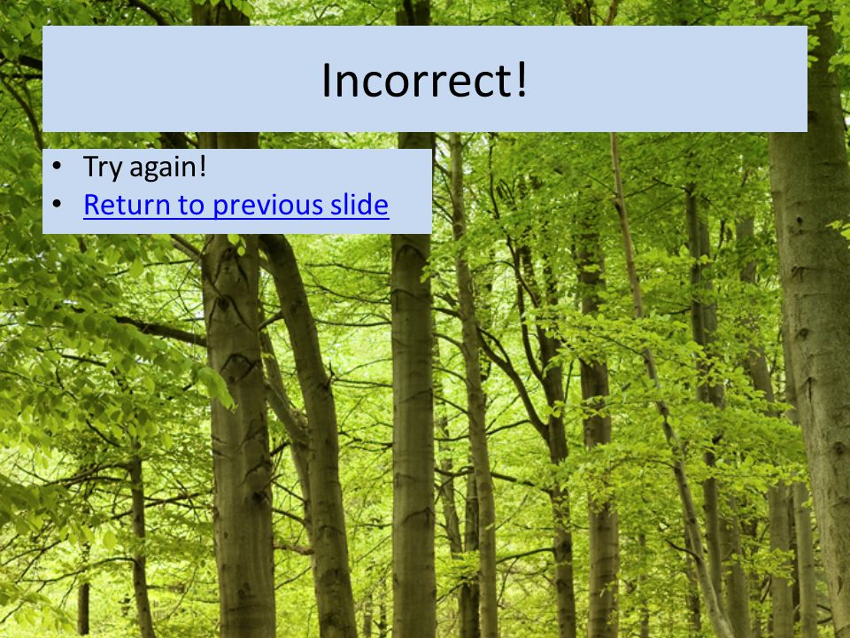 Incorrect! Try again! Return to previous slide