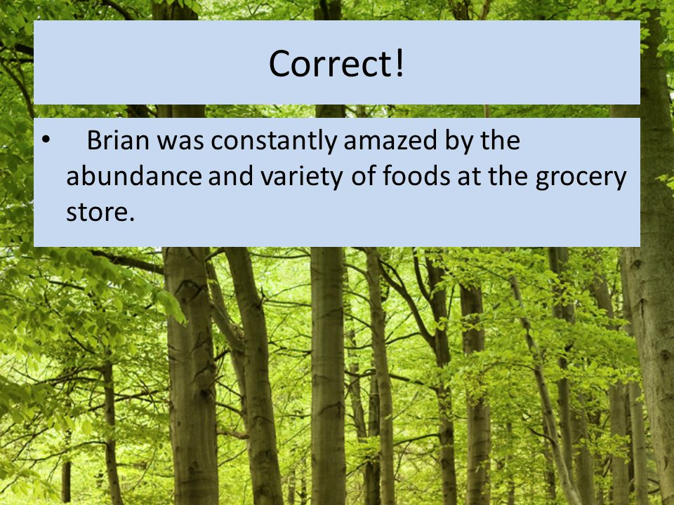 Correct! Brian was constantly amazed by the abundance and variety of foods at the grocery store.
