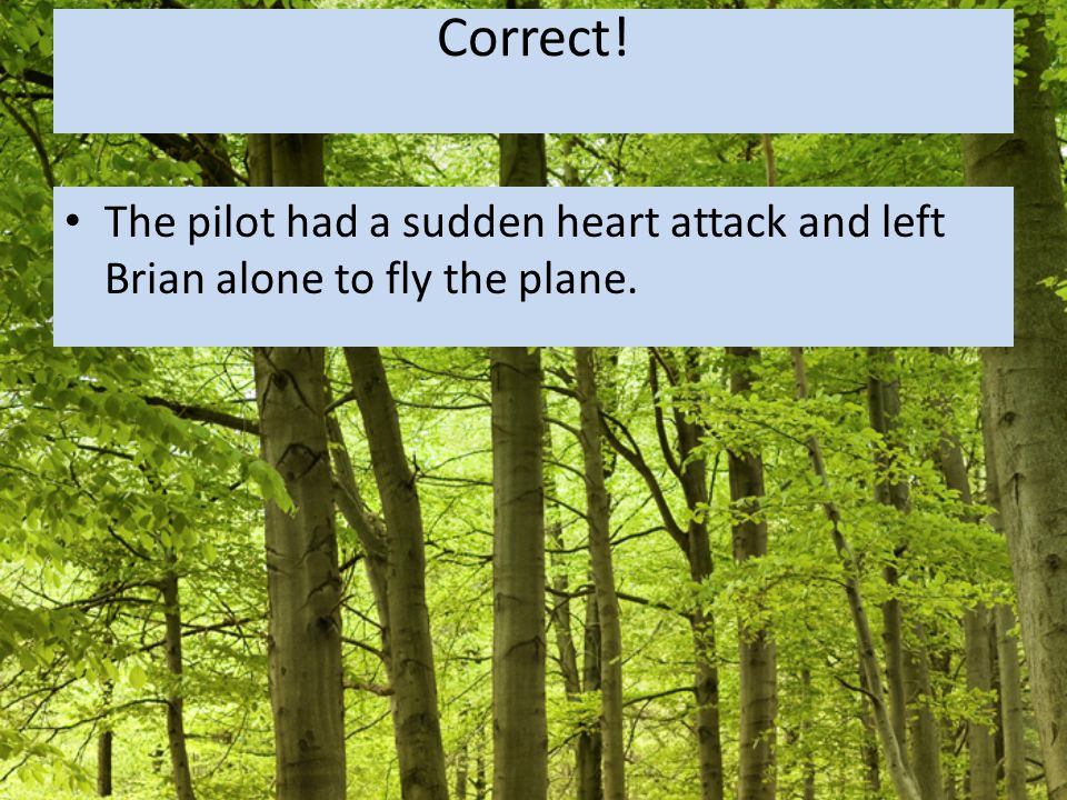 Correct! The pilot had a sudden heart attack and left Brian alone to fly the plane.