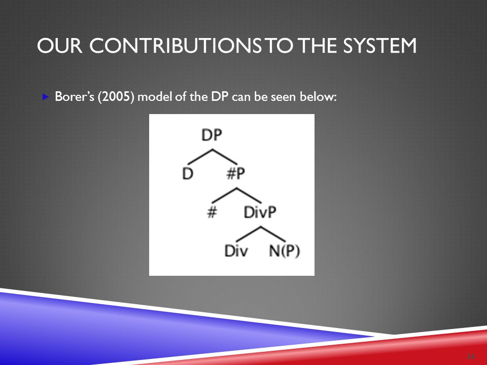 OUR CONTRIBUTIONS TO THE SYSTEM  Borer's (2005) model of the DP can be seen below: 24
