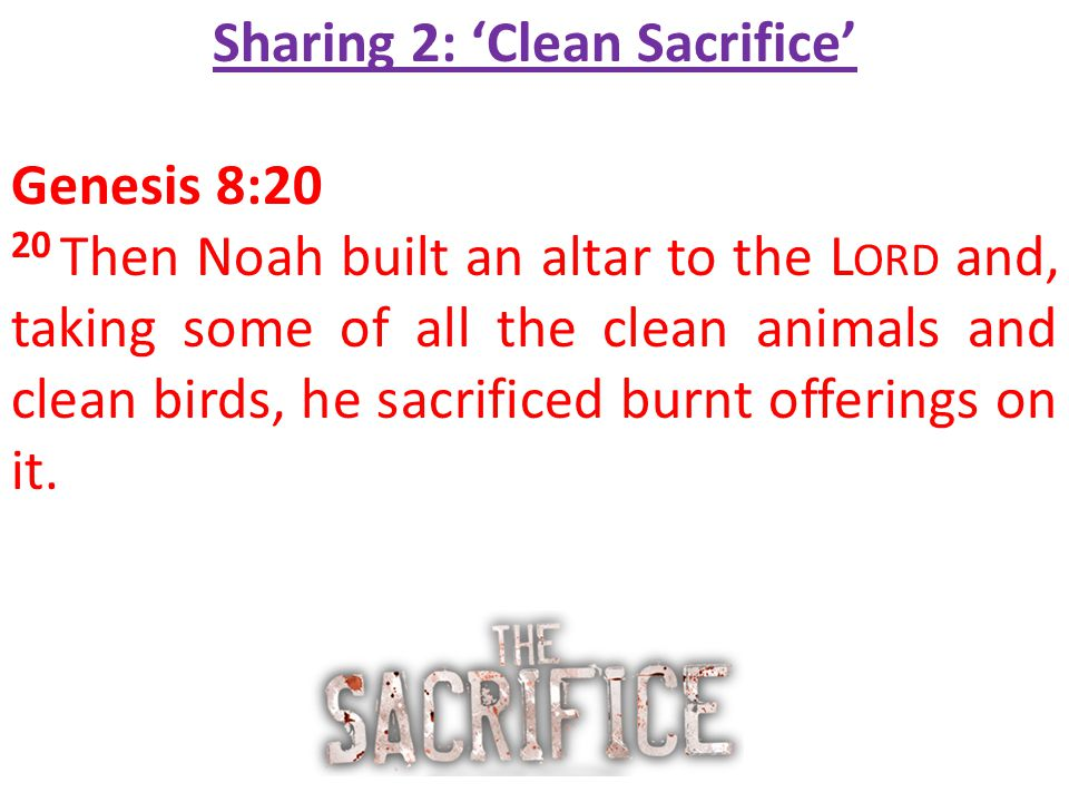 Sharing 2: 'Clean Sacrifice' Genesis 8:20 20 Then Noah built an altar to the L ORD and, taking some of all the clean animals and clean birds, he sacrificed burnt offerings on it.