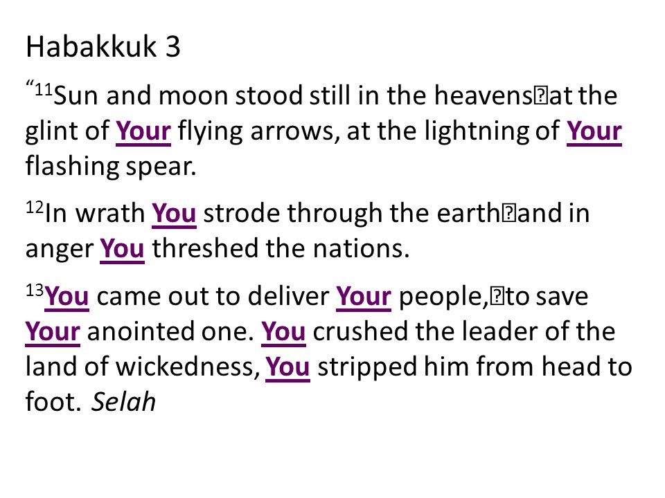 Habakkuk 3 11 Sun and moon stood still in the heavens at the glint of Your flying arrows, at the lightning of Your flashing spear.
