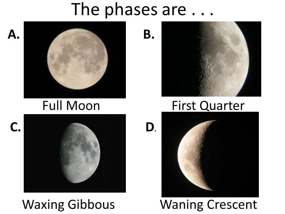 The phases are... A.B. C.D.D. Full MoonFirst Quarter Waxing GibbousWaning Crescent