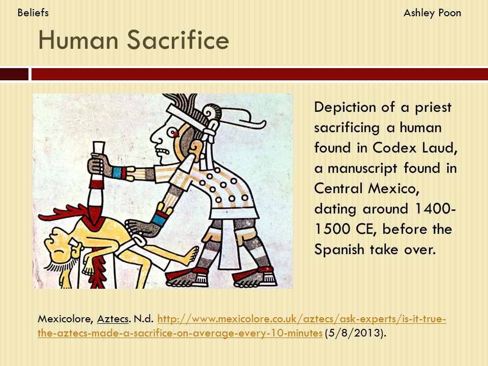 Human Sacrifice Depiction of a priest sacrificing a human found in Codex Laud, a manuscript found in Central Mexico, dating around 1400- 1500 CE, before the Spanish take over.