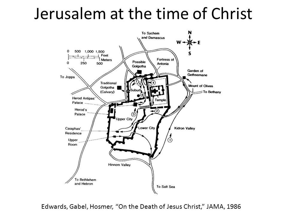 "Jerusalem at the time of Christ Edwards, Gabel, Hosmer, ""On the Death of Jesus Christ,"" JAMA, 1986"