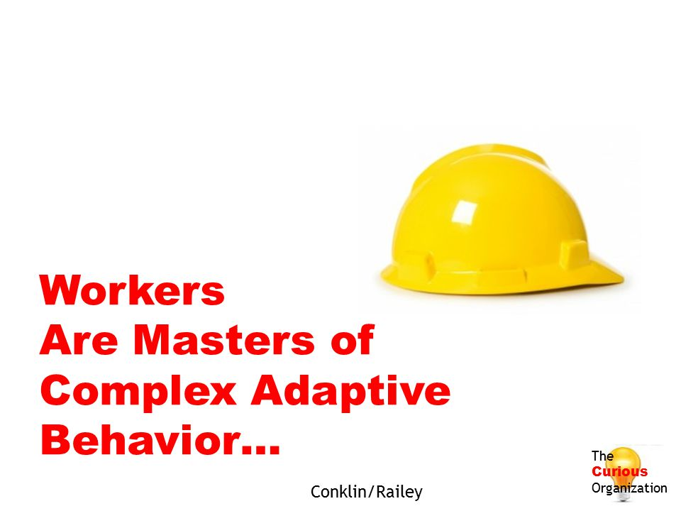 Workers Are Masters of Complex Adaptive Behavior… The Curious Organization Conklin/Railey