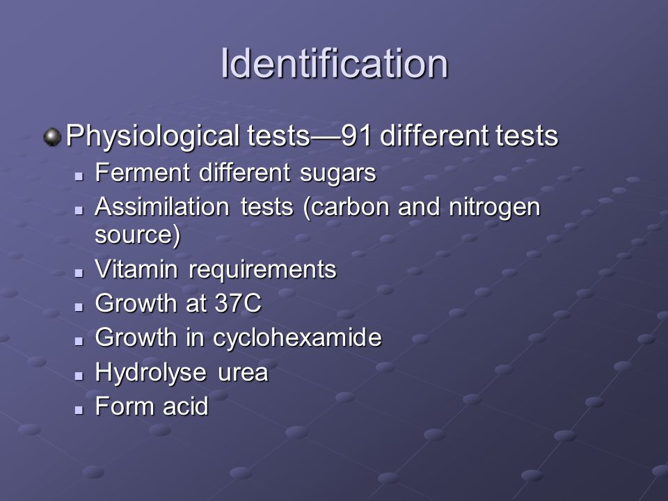 Identification Physiological tests—91 different tests Ferment different sugars Ferment different sugars Assimilation tests (carbon and nitrogen source