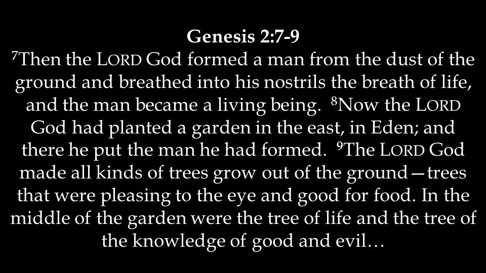 Genesis 2:7-9 7 Then the L ORD God formed a man from the dust of the ground and breathed into his nostrils the breath of life, and the man became a li