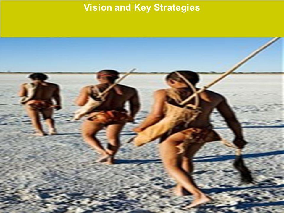 15 Vision and Key Strategies