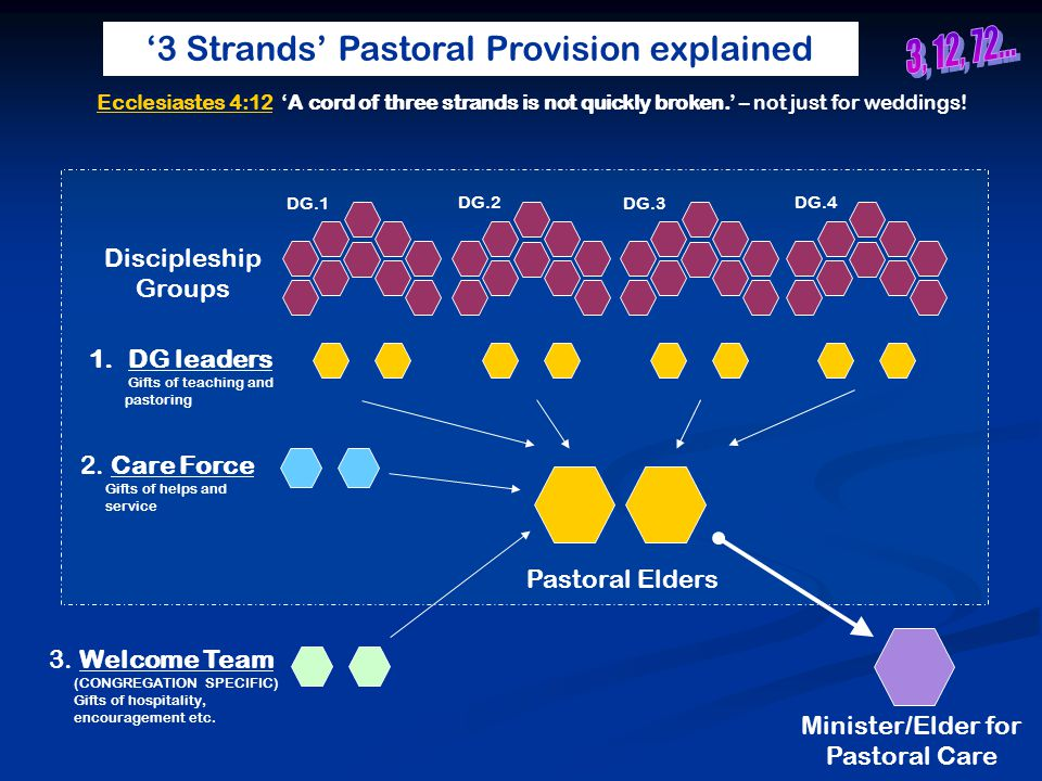 '3 Strands' Pastoral Provision explained Minister/Elder for Pastoral Care Pastoral Elders DG.1 DG.2 DG.3 DG.4 1.DG leaders Gifts of teaching and pastoring 2.