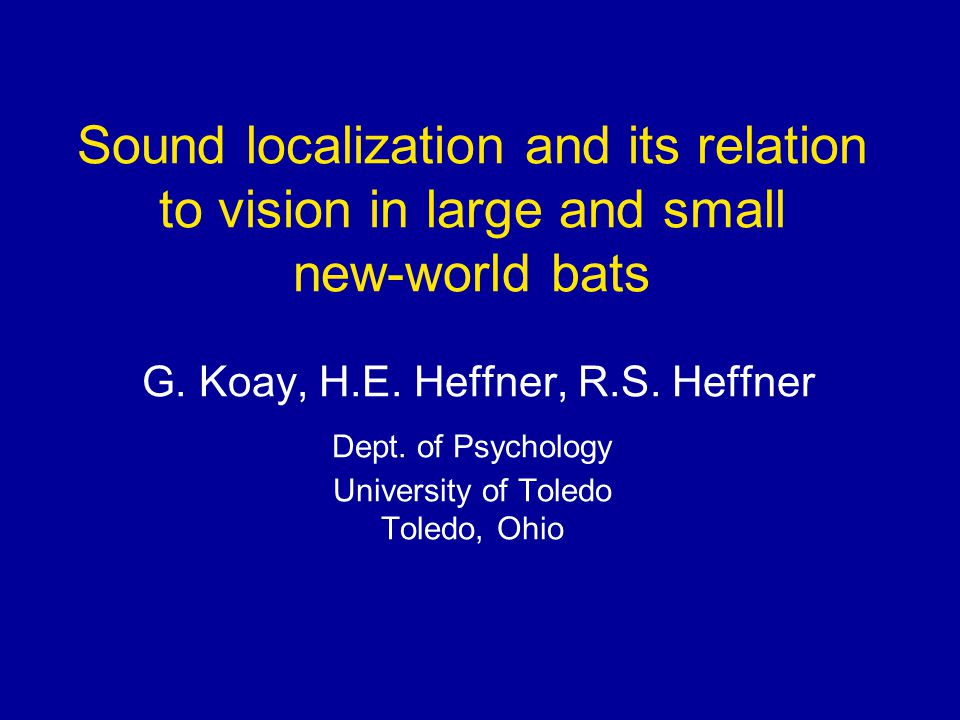 Sound localization and its relation to vision in large and small new-world bats G.