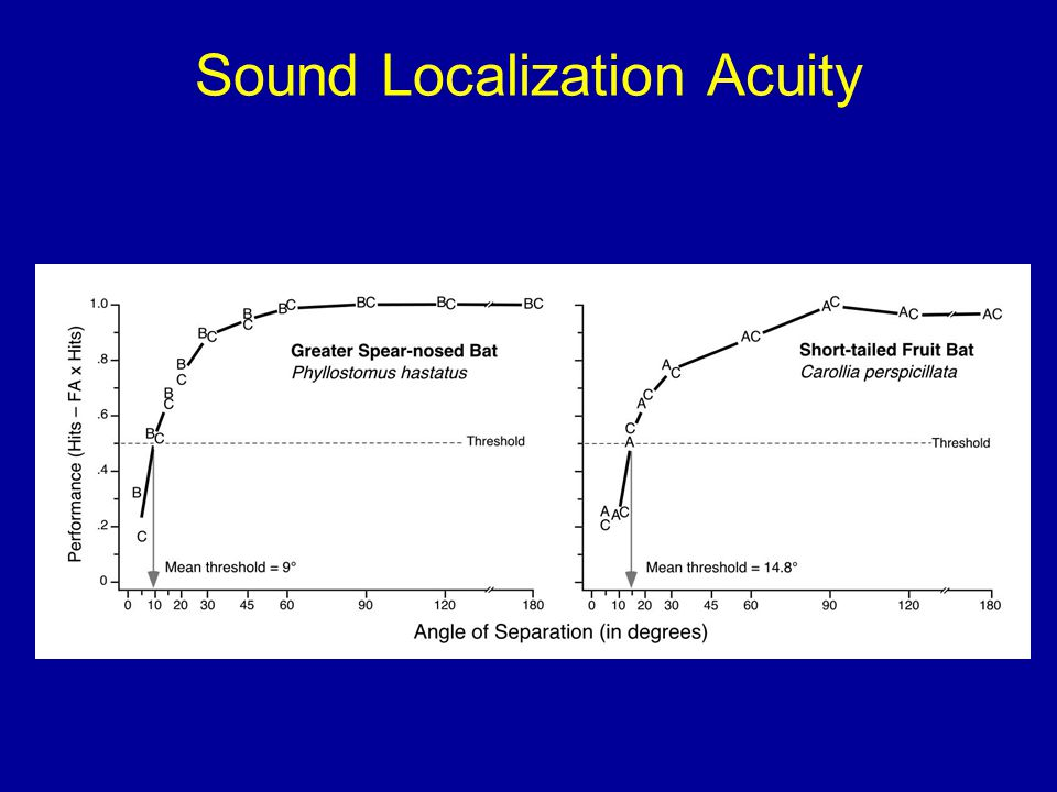 Sound Localization Acuity