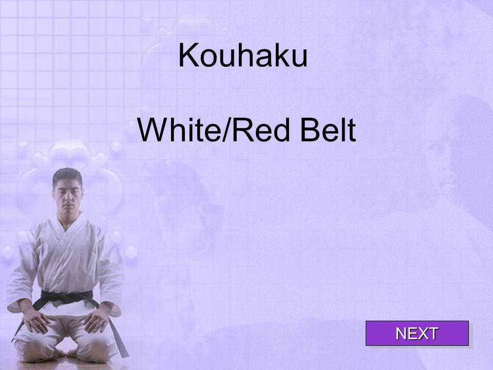 Kouhaku White/Red Belt NEXT