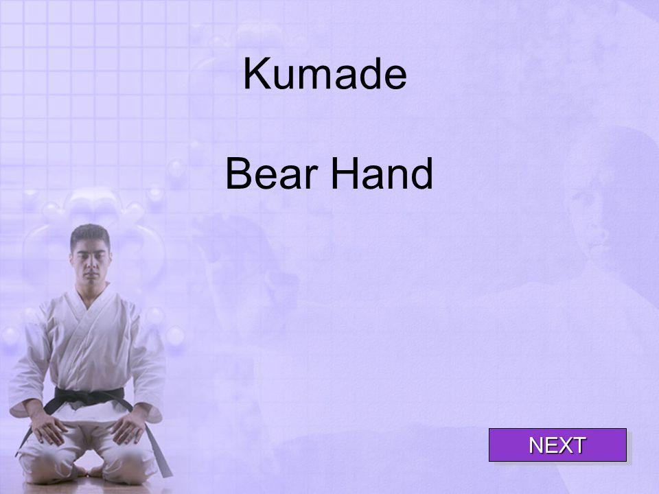Kumade Bear Hand NEXT