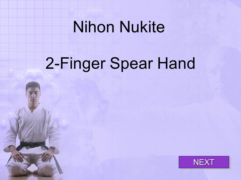 Nihon Nukite 2-Finger Spear Hand NEXT