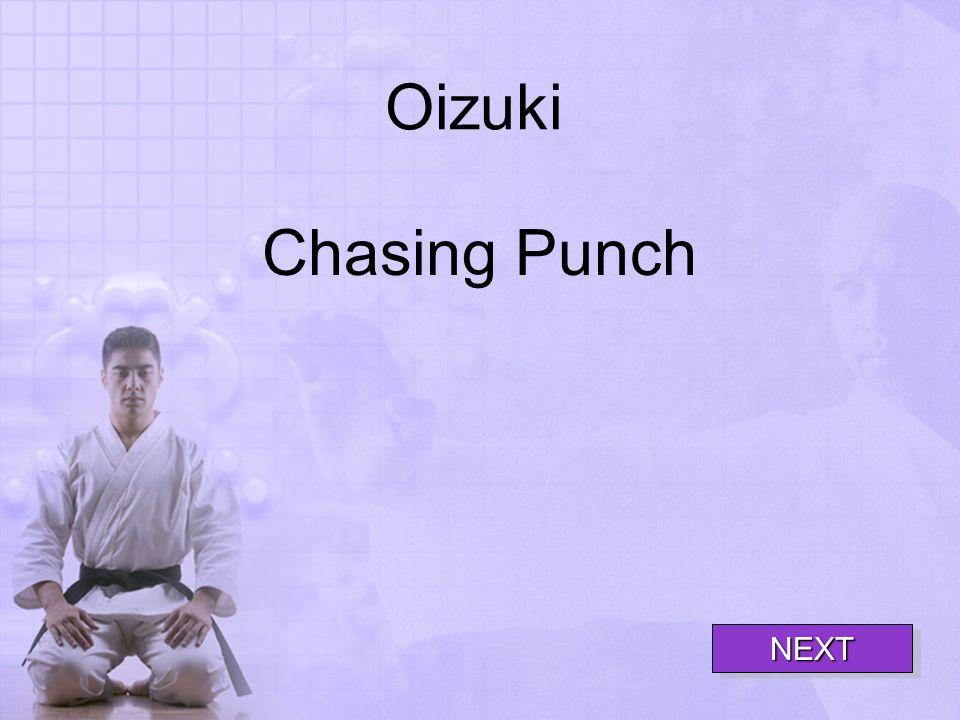 Oizuki Chasing Punch NEXT