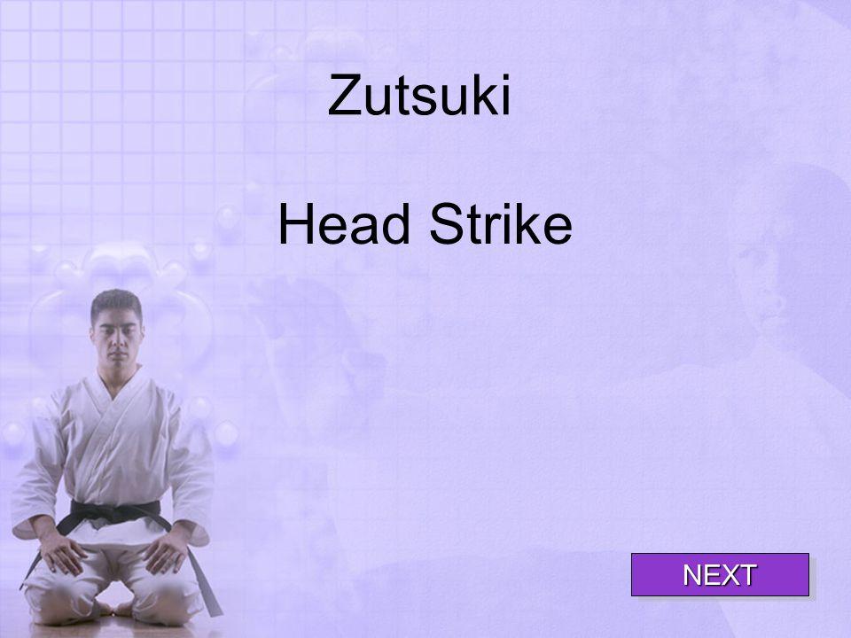 Zutsuki Head Strike NEXT