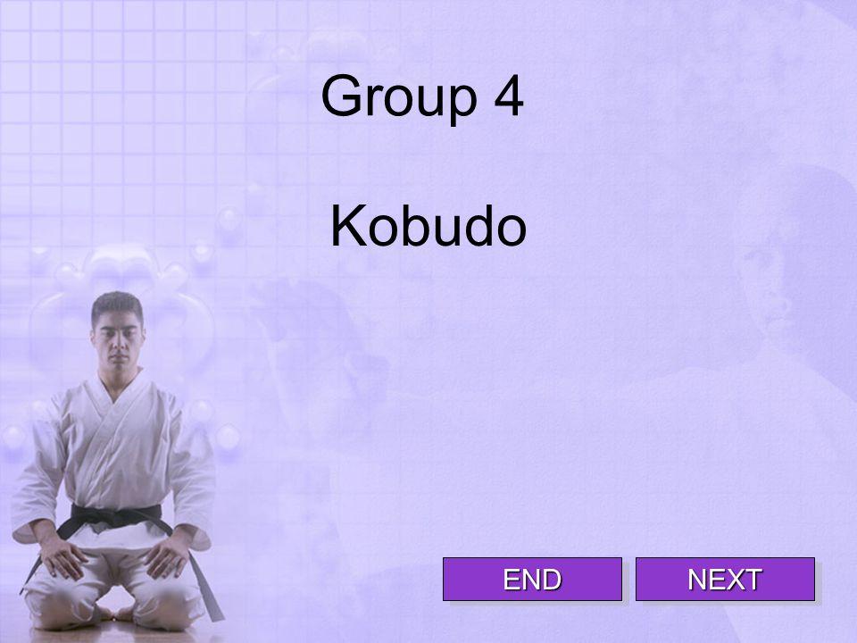 Group 4 Kobudo NEXTNEXT END