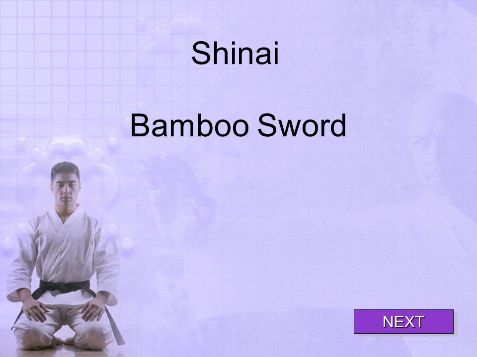 Shinai Bamboo Sword NEXT